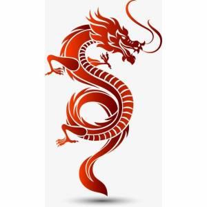Profilbild von dragonpanda